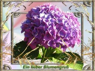 blumengruss-7 - Kopie