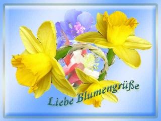 blumengruss-9 - Kopie