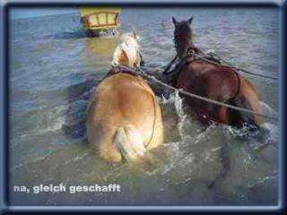 kutsche7